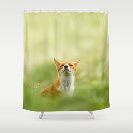 The Mindful Fox Shower Curtain