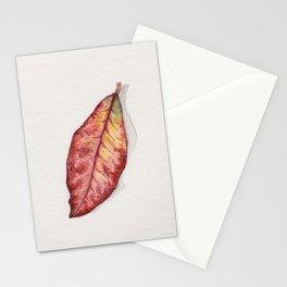 Petra Croton Stationery Cards