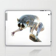 Slender Loris Laptop & iPad Skin
