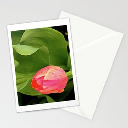 Joyful Tulip Stationery Cards