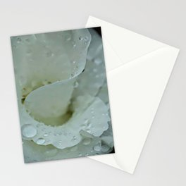 White Floral Stationery Cards