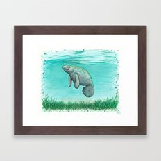 Mossy Manatee ~ Watercolor & Ink Painting by Amber Marine Framed Art Print