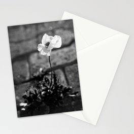 Poppy blooming Stationery Cards