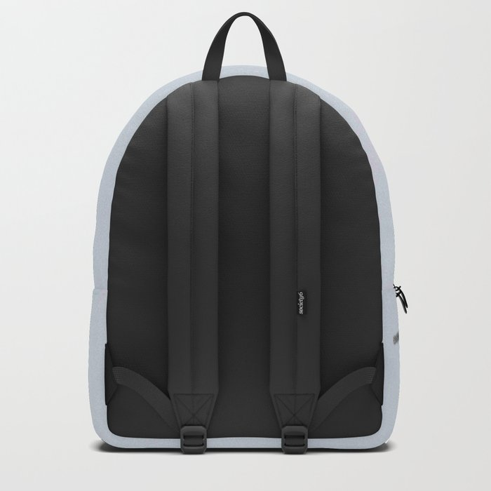 Osprey Backpack