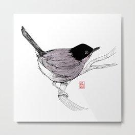 Blackcap Bird Metal Print
