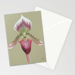 paphiopedilum callosum Stationery Cards