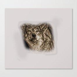 Wolf on gray Canvas Print