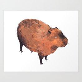 Capybara  Art Print