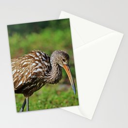 Reinvent Yourself Stationery Cards
