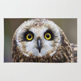Short Eared Owl Rug