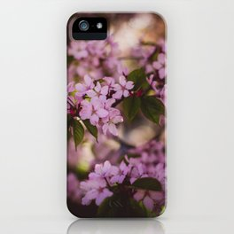 Beauty of Spring IV iPhone Case