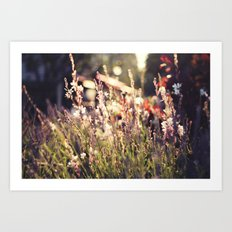 Flowers and light Art Print
