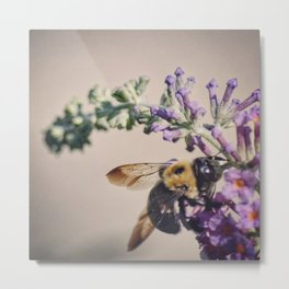 Bee-autiful Metal Print