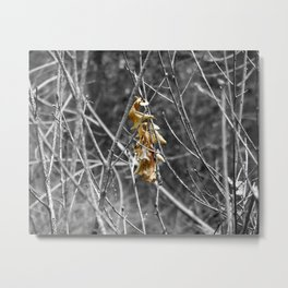 Hanging By A Stem Metal Print