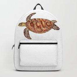 Green turtle Chelonia mydas Backpack