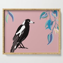Australian Magpie on Pink Serving Tray
