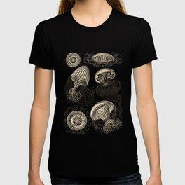 Ernst Haeckel Jellyfish Leptomedusae Wenge T-shirt