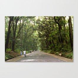 Yoyogi Park // Tokyo Canvas Print