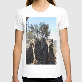 Cool tree, rocks, road trip, growing from a rock pile T-shirt
