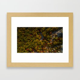 Aerial drone view of amazing autumn colors in fall forest. Framed Art Print