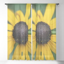 flower center Sheer Curtain