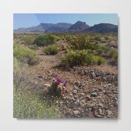 Painted Desert - V Metal Print