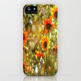 Coreopsis Sunburst iPhone Case
