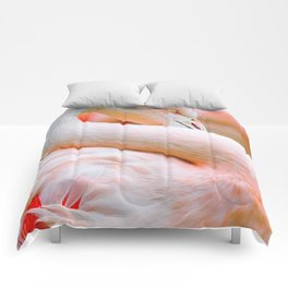 Mad Flamingo (Color) Comforters