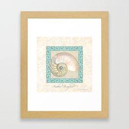 Greek Key Nautilus Seashell Botanical Shell w Striped Pattern Framed Art Print