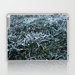 Frosted Grass Laptop & iPad Skin