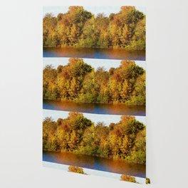 Autumn Blaze Wallpaper