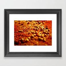 Spice Land: 2 Framed Art Print