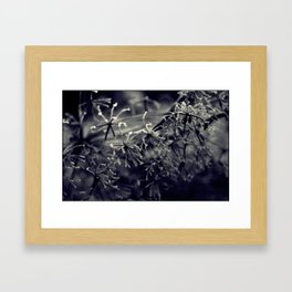 Winter's tale '25' Framed Art Print