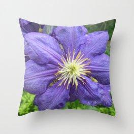 Clematis Dream Throw Pillow
