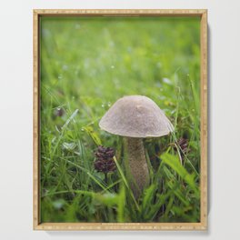 Mushroom in the Morning Dew by Althéa Photo Serving Tray
