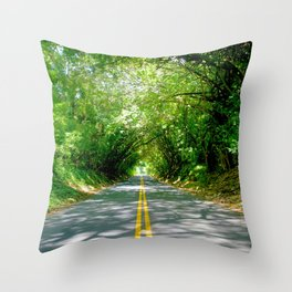 The Old Pali Cathedral Throw Pillow