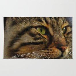 Aslan The Long Haired Tabby Cat Rug