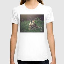 Rumination T-shirt