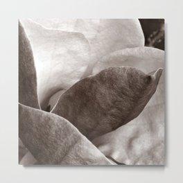 MAGNOLIA - B&W - Duplex Metal Print