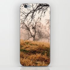 Natural Mystic in the Air iPhone Skin