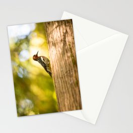 Woodpecker in the Rainforest Stationery Cards