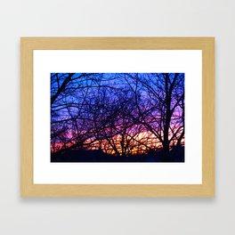 branch silhouette Framed Art Print