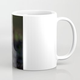 GREY SQUIRREL FORAGE Coffee Mug