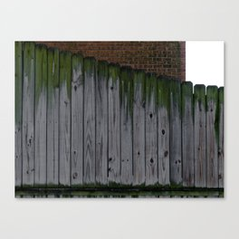 Mossed Fence Canvas Print