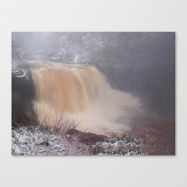 Winter at Blackwater Falls Canvas Print