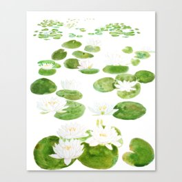 white water lily  pone watercolor painting  Canvas Print