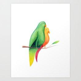 #18 – Pappagalli Art Print