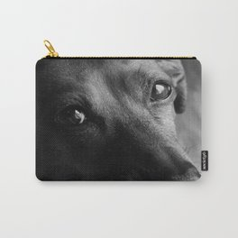 Luci Carry-All Pouch