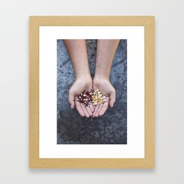 Food Jewels CORN Painted Mountain and Ashworth Framed Art Print