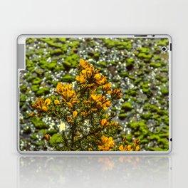 Mylor Creek - Gorse Bush Laptop & iPad Skin